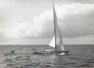 Cobra in 1956