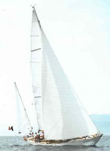 Nina VI