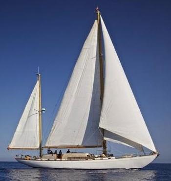 Tortuga III sail copy