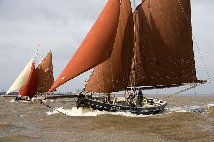 Maldon Town regatta