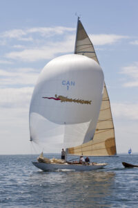 Quest, 8 metre, blue seas spinnaker